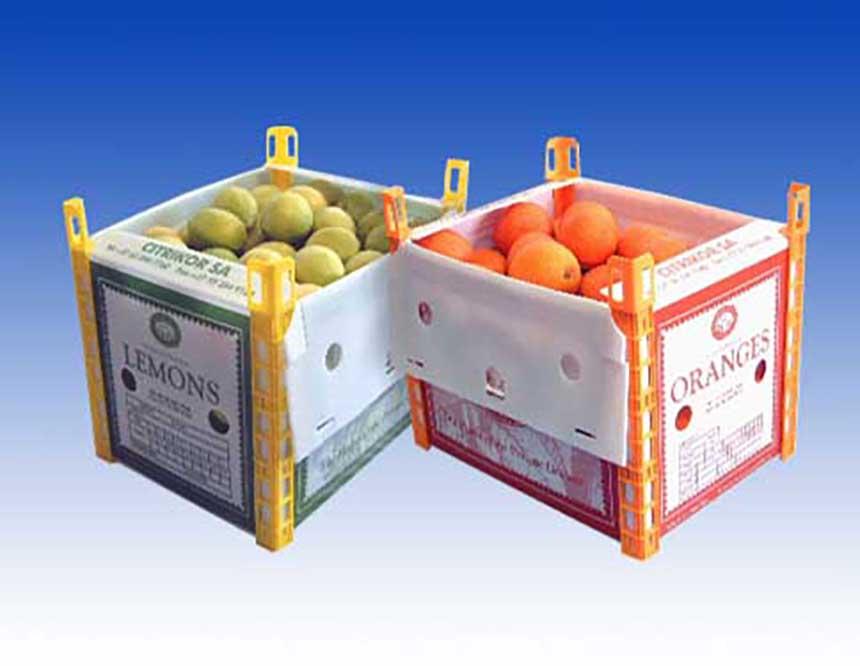 出口加拿大水果箱